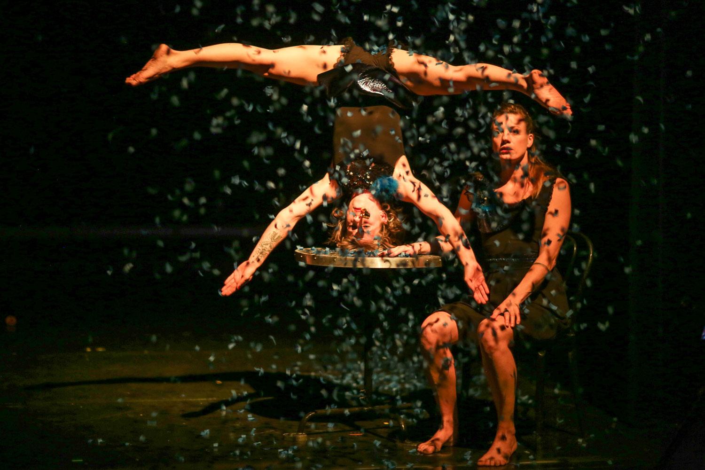 Projetpdf Programme Onyx Théâtre De Saint Herblain